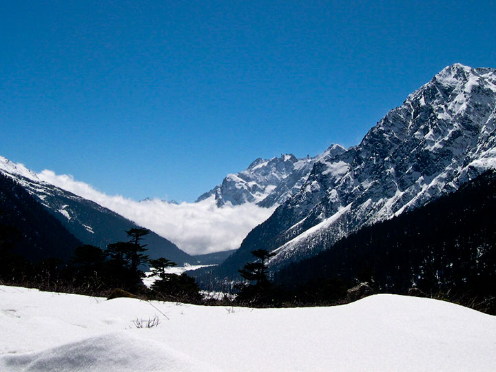 North Sikkim Yumthang Valley Tour